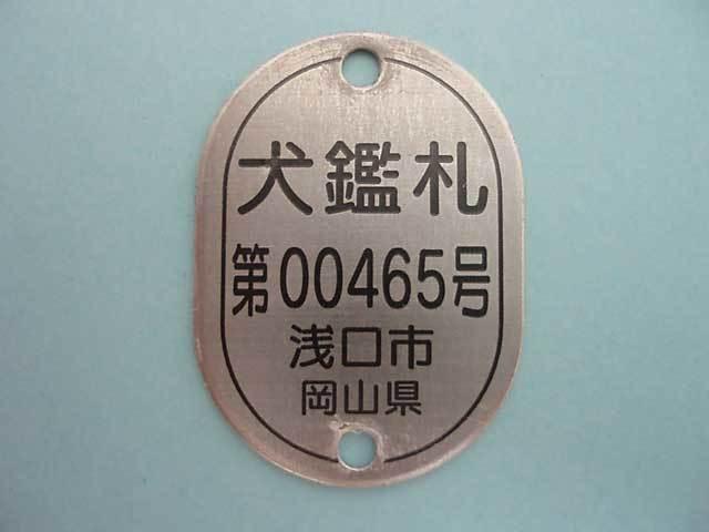 RV-001.jpg