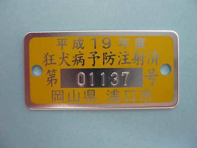 RV-002.jpg